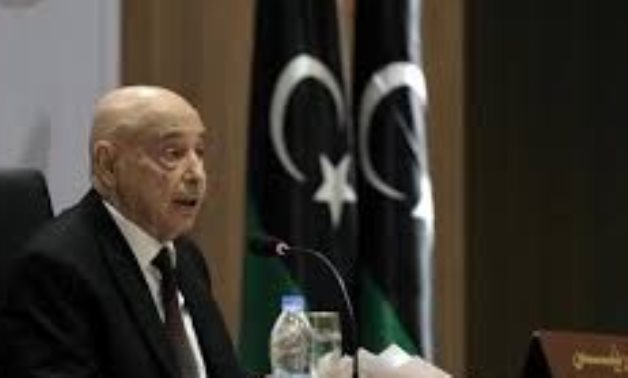 Libyan Speaker says LNA aims to liberate Tripoli from terrorism not reaching power