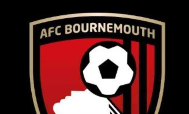 Bournemouth appoint Howe's assistant Tindall as new manager