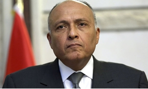 Egyptian Foreign Minister Sameh Shoukry (Archive)