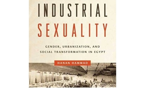 Industrial Sexuality - File Photo