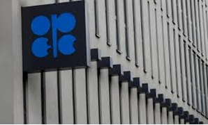 The logo of the Organization of the Petroleum Exporting Countries (OPEC) is pictured at its headquarters in Vienna, Austria September 21, 2017. REUTERS/Leonhard Foeger