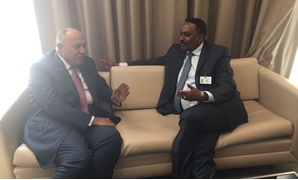 FM Shoukry with his Ethiopian counterpart – press photo