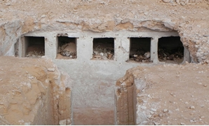the tomb, Undated - Official Press Release from the Alamein Archaeological site