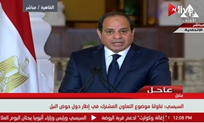 TV Screenshot of President Abdel Fatah al-Sisi's speech at a joint press conference Thursday, January 18, 2018.