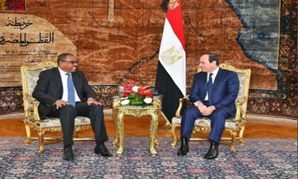 Egyptian President Abdel Fattah al-Sisi (R) and Ethiopian Prime Minister Hailemariam Desalegn talk during their meeting in the Egyptian Presidential Palace in Cairo, Egypt, January 18, 2018 - the Egyptian Presidency/Handout via Reuters