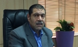 FILE- Chief executive of Tourism Development Authority, Serag el-Din Saad