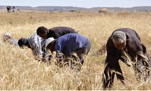 Farming in Eritrea - Africa Development Bank Group