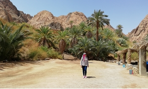 Looking for answers in Wadi Gnai valleyh, Dahab - Photo provided by Rabab Fathy