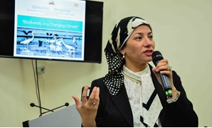 Environment Minister Yasmine Fouad during a Cairo Climate Talks event on May 2, 2017 - Photo Courtesy of Cairo Climate Talks
