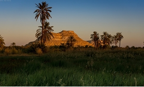 Sunset at Maraqi, on date palms in front of Jārī inselberg, Siwa oasis- CC via Wikimedia