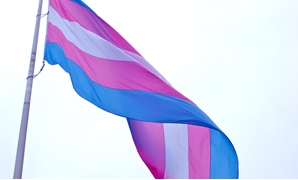 Transgender flag - CC via Flickr/torbakhopper