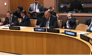 - Press photoa- Foreign Minister Sameh Shoukry participates in a ministerial meeting of the Forum, held in New York on the sidelines of the 73rd session of the United Nations General Assembly