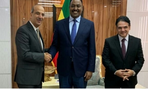 New Egyptian amb. submits credentials to Ethiopian FM - Press Photo