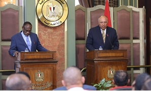 Egypt's Foreign Minister Sameh Shoukry and his Sudanese counterpart Mohamed Ahmed held a meeting on Wednesday