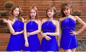 All four members of the K-pop group SixBomb underwent extensive plastic surgery -- from nose jobs to breast implants -- before releasing their first single AFP/File