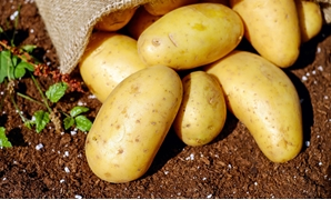 Potatoes- CC via Pixabay