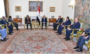 President Abdel Fatah al-Sisi in a meeting with Somali counterpart Mohamed Abdullahi Farmaajo in Cairo, Egypt. April 23, 2019. Press Photo