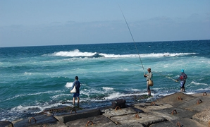 Fishermen in Alexandria, Egypt- CC via Wikimedia