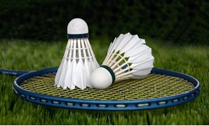 Badminton shuttle sport bat racket leisure - CC via Pixabay