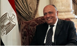 Egypt's Foreign Minister Sameh Shoukry smiles during his meeting with Russian Foreign Minister Sergei Lavrov in Cairo, Egypt May 29, 2017. REUTERS/Amr Abdallah Dalsh