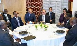 PRESS: This came on the sideline of a luncheon hosted by the Egyptian leader, as Chairperson of the African Union