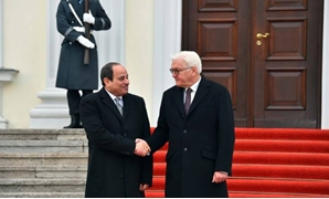 PRESS: (L) Egyptian President Abdel Fattah El-Sisi shakes hand with (R) German President Frank-Walter Steinmeier during the Egyptian leader's visit in Berlin on November 19, 2019
