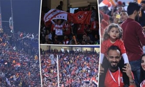 Egyptian fans celebrate qualifying - FILE