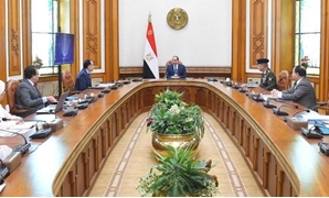 Egyptian President Abdel Fatah al Sisi during a meeting with his cabinet to discuss the current situation amid pandemic- press photo