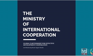 Global Partnership for Effective Development Cooperation (GPEDC) Survey