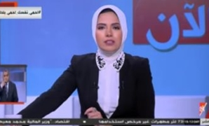 Aya Abdel Rahman - Screenshot from Extra News channel.