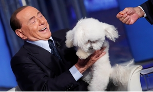 "Italy's former Prime Minister Silvio Berlusconi plays with a dog during the television talk show ""Porta a Porta"" (Door to Door) in Rome, Italy June 21, 2017. Picture taken June 21, 2017. REUTERS/Remo Casilli"